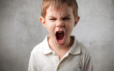 Trastorno del espectro autista y problemas de conducta